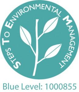 e-Advantage Solutions STEM Blue logo